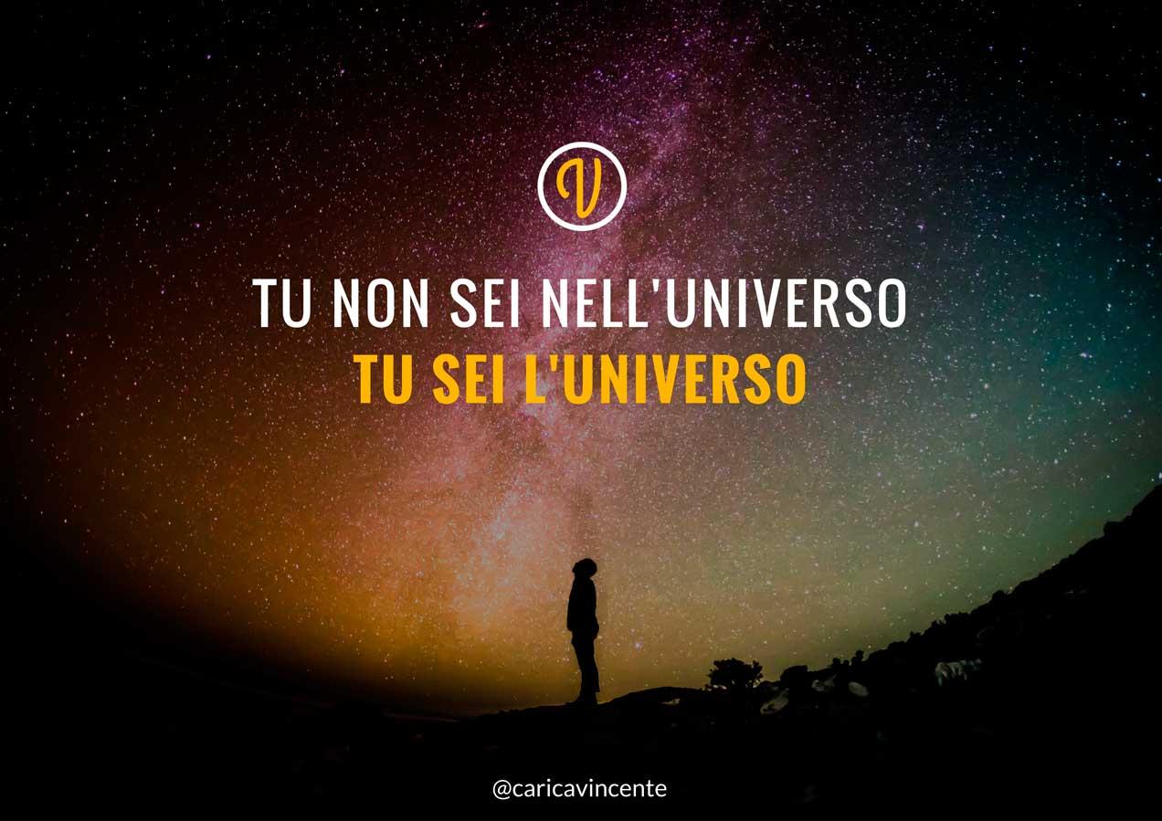 tu non sei nell'universo tu sei l'universo