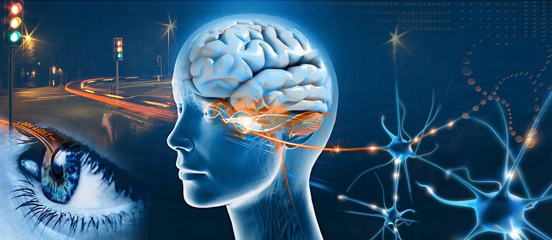programmazione neurolinguistica pnl